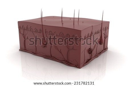 3d cross section of Skin in one colour - stock photo