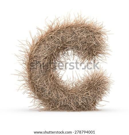 3d decorative nature letter C - stock photo