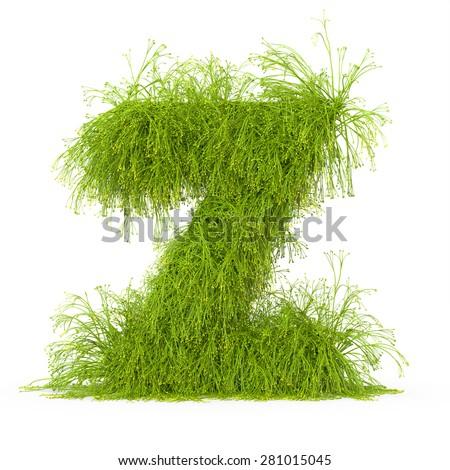 3d decorative nature letter Z - stock photo