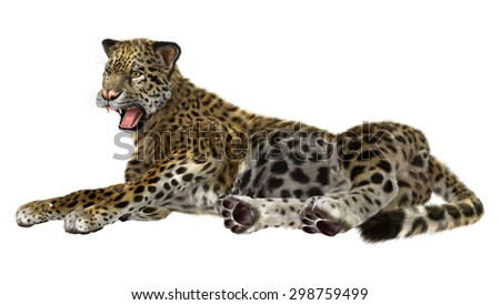 3D digital render of a big cat jaguar resting isolated on white background