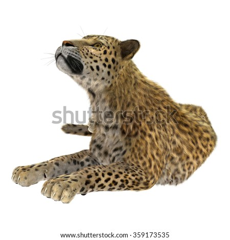 3D digital render of a big cat leopard isolated on white background
