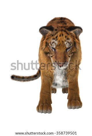 3D digital render of a big cat tiger isolated on white background
