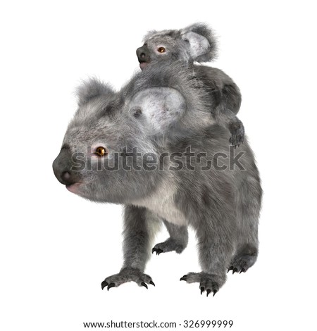 3D digital render of a cute Australian koala bear carrying baby isolated on white background