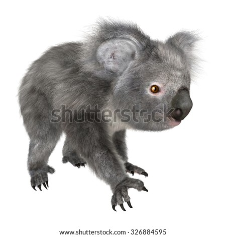 3D digital render of a cute koala walking isolated on white background