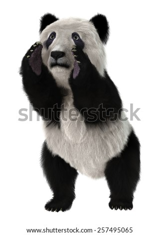 3D digital render of a cute panda bear isolated on white background - stock photo