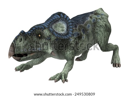 3D digital render of a dinosaur protoceratops isolated on white background - stock photo