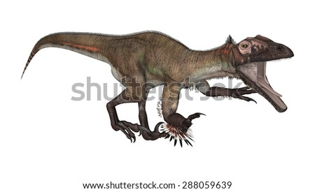 3D digital render of a dinosaur utahraptor isolated on white background