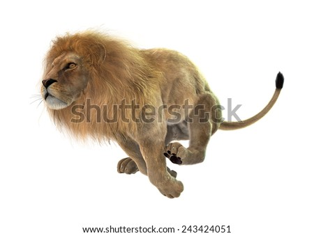 3D digital render of a jumping male lion isolated on white background - stock photo