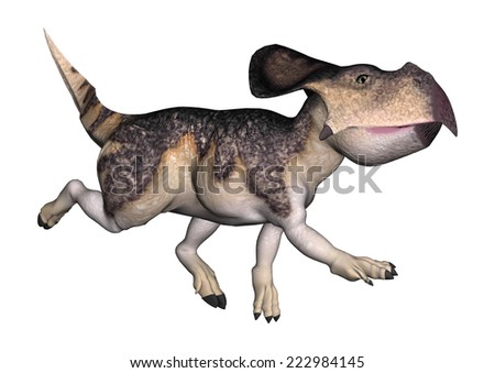 3D digital render of a running dinosaur protoceratops isolated on white background