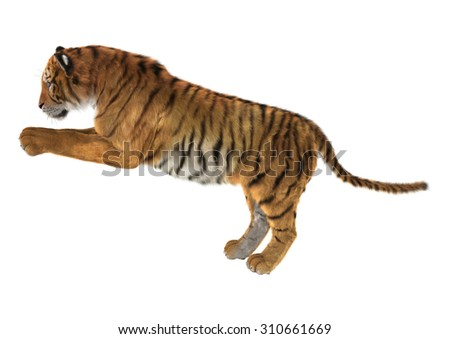 3D digital render of a tiger isolated on white background