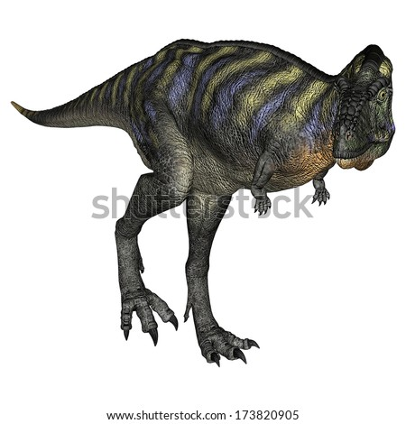 3D digital render of a walking dinosaur Aucasaurus isolated on white background