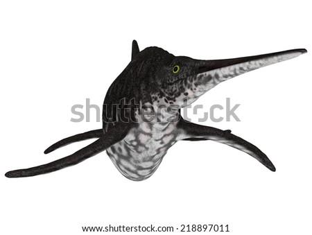 3D digital render of an ichthyosaur shonisaurus isolated on white background - stock photo
