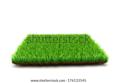 3d grass on white background - stock photo