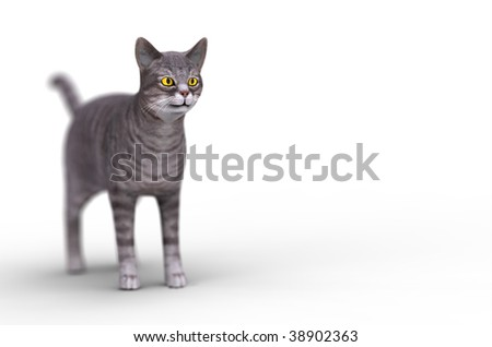3d grey cat isolated on a white background - stock photo