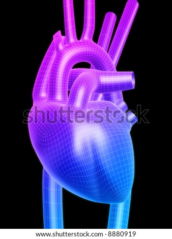 3d heart - stock photo