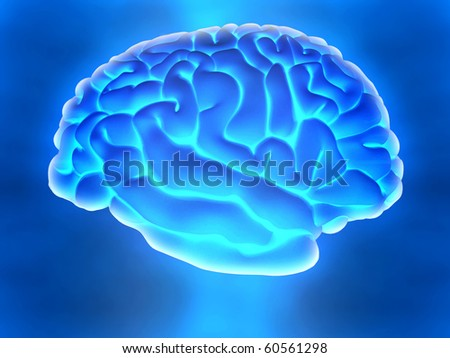 3D human brain from the side over a blue background - stock photo