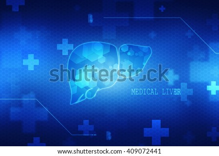 2d human Liver and Gallbladder - stock photo