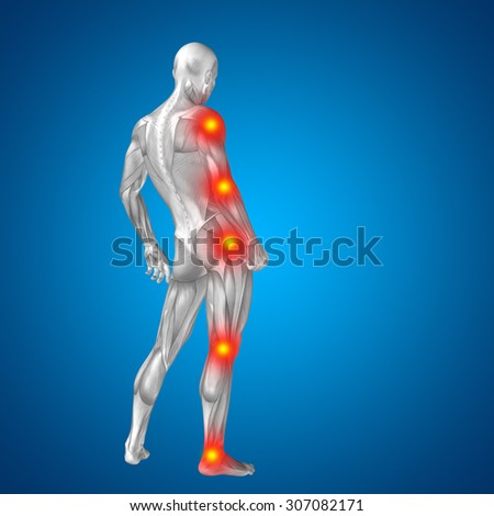 3D human or man with muscles for anatomy or health designs with articular or bones pain isolated on blue background for health, medicine, medical, biology, osteoporosis, arthritis, joint, inflammation - stock photo