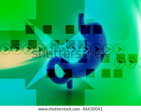 3d human stomach in digital background