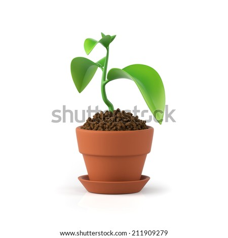 3D illustration. Flower in a pot on a white background - stock photo