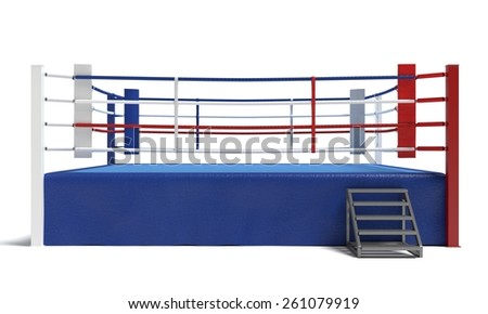 3d illustration of a boxing front view