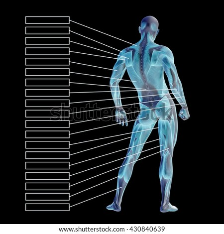3D illustration of a concept 3D male human anatomy, a man with muscles and textbox isolated on black for body, tendon, fit, builder, strong, biological, skinless, shape muscular posture health medical