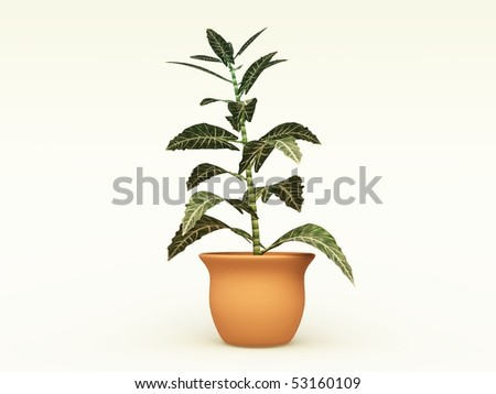 3D illustration of a houseplant for interior decoration in a terra cotta pot - stock photo