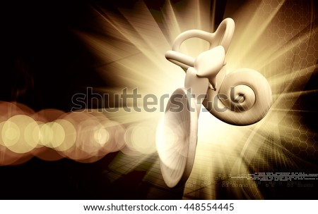 3d illustration of a inner ear structure - stock photo