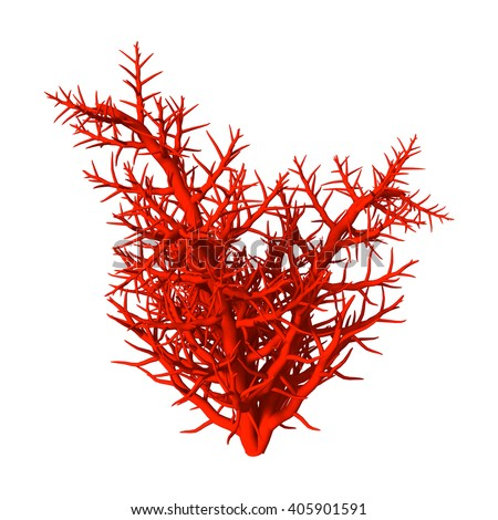 3D Illustration of a red coral isolated on white background - stock photo