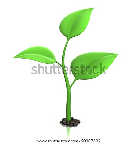 3d illustration of a small plant isolated on white