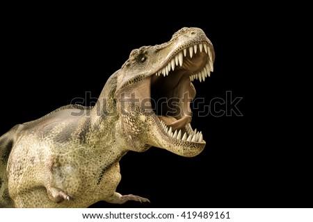 3d illustration of a Tyrannosaurus rex isolated on black background - stock photo
