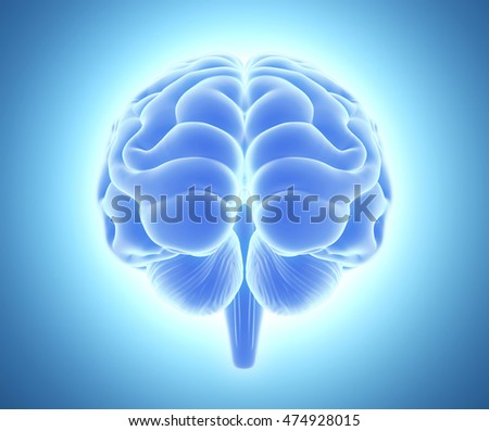 3D illustration of bright blue brain, anatomy and medical concept.