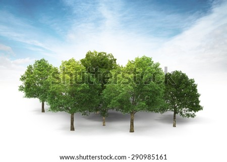 3d illustration of grove isolated on white with blue sky and clouds background - stock photo