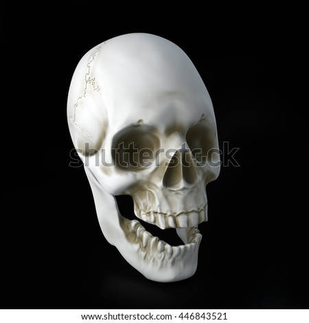 3D illustration of skull on black background