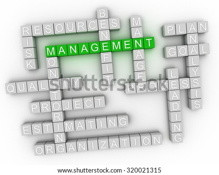 3d image Management word cloud concept - stock photo