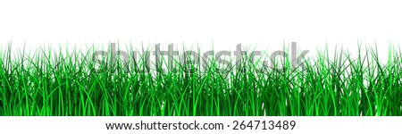 3D image of grass on white bacgkround.