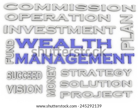 3d image wealth management  issues concept word cloud background - stock photo