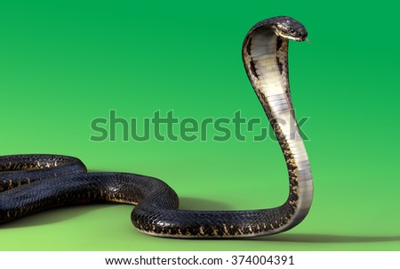 3d King cobra snake isolated on green background - stock photo