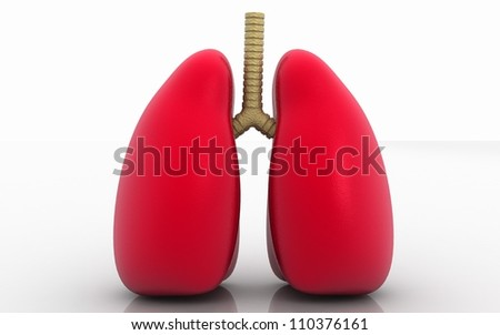 3d lungs isolated on white background - stock photo
