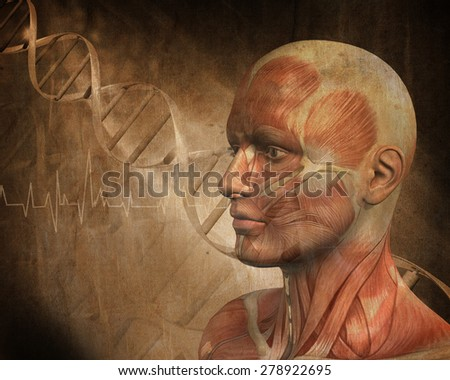 3D medical figure with muscle map on a grunge style DNA abstract background - stock photo