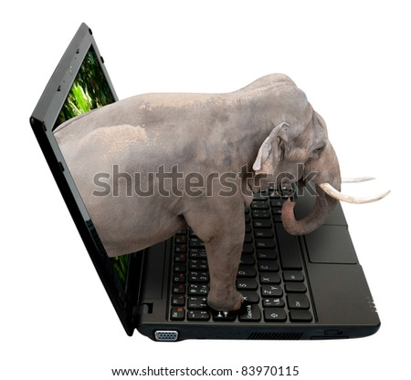 3D Netbook / Notebook With Elephant on the Screen - isolated on White - stock photo