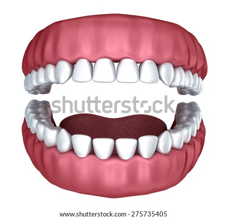 3d open denture isolated on white