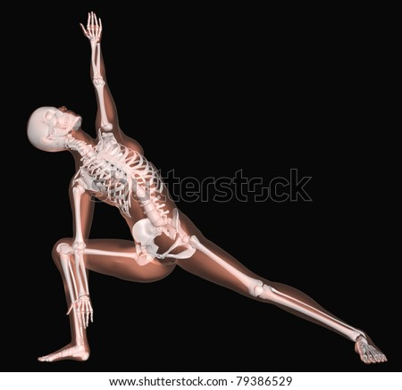 3D render of a female medical skeleton in a yoga position - stock photo