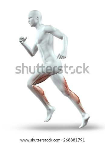 3D render of a male figure running with leg muscles showing - stock photo
