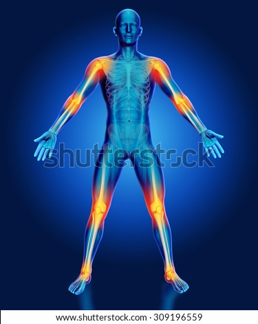 3D render of a male medical figure with joints highlighted - stock photo