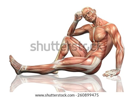 3D render of a sitting male figure with detailed muscle map - stock photo