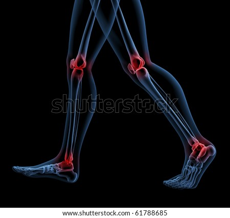 3D render of a skeleton close up of legs walking