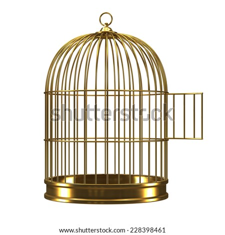 Birdcage stock images royalty free images vectors for Cage d oiseau decorative