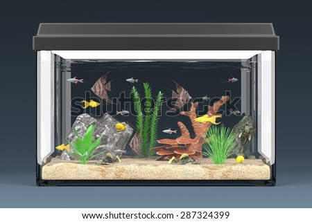 3d render of fish aquarium - stock photo