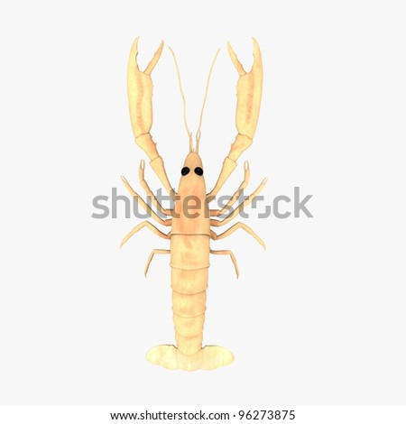 3d render of scampi animal - stock photo